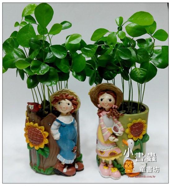 「植物、種子、樹」留住自然繪本